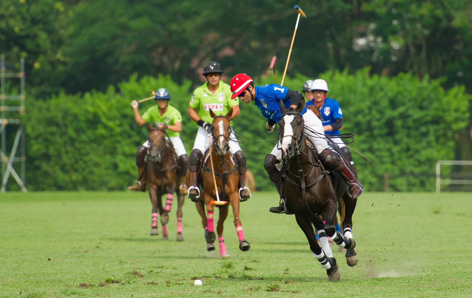 Singapore Polo Club Match