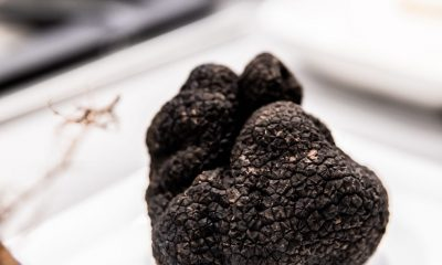 Simon Johnson Truffle Masterclass with David Coomer